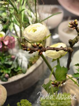 Jutta Nowak Frühlingsausstellung 2015: Ranunkel weiß