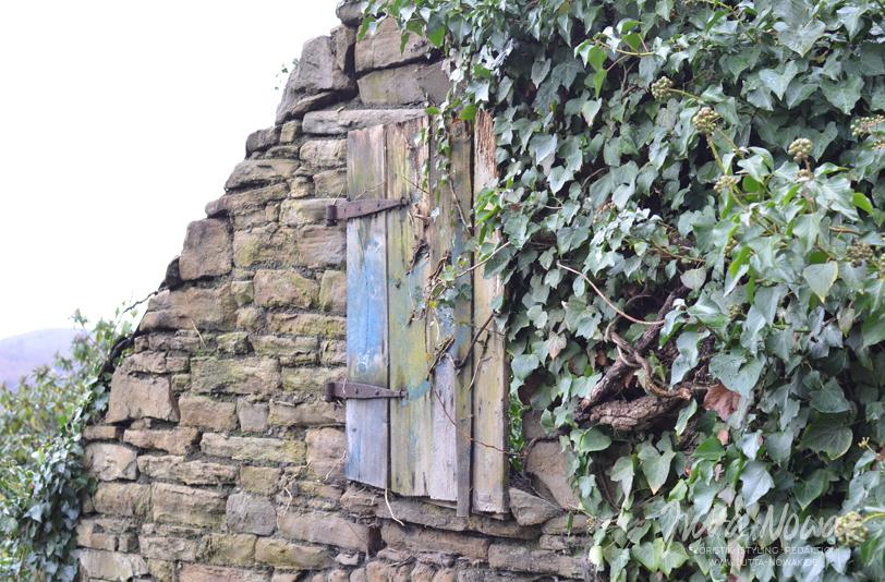 Jutta Nowak I Blog I 12 von 12 Januar 2016 I Outdoor I Bruchsteinhaus mit alter Tür