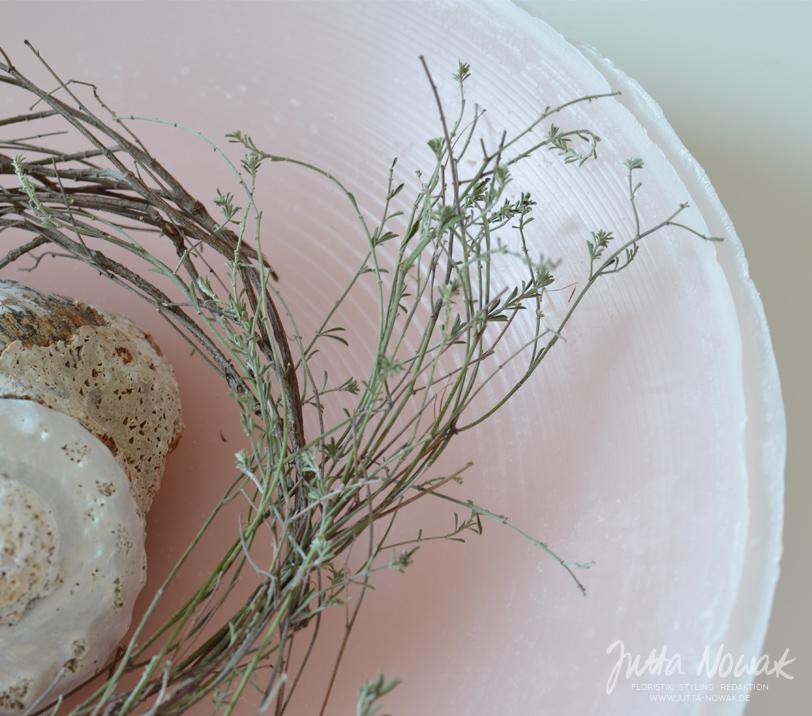 Jutta Nowak Blog: DIY-Anleitung Wachsschale gießen, Dekoration mit Muschel und Euphorbie