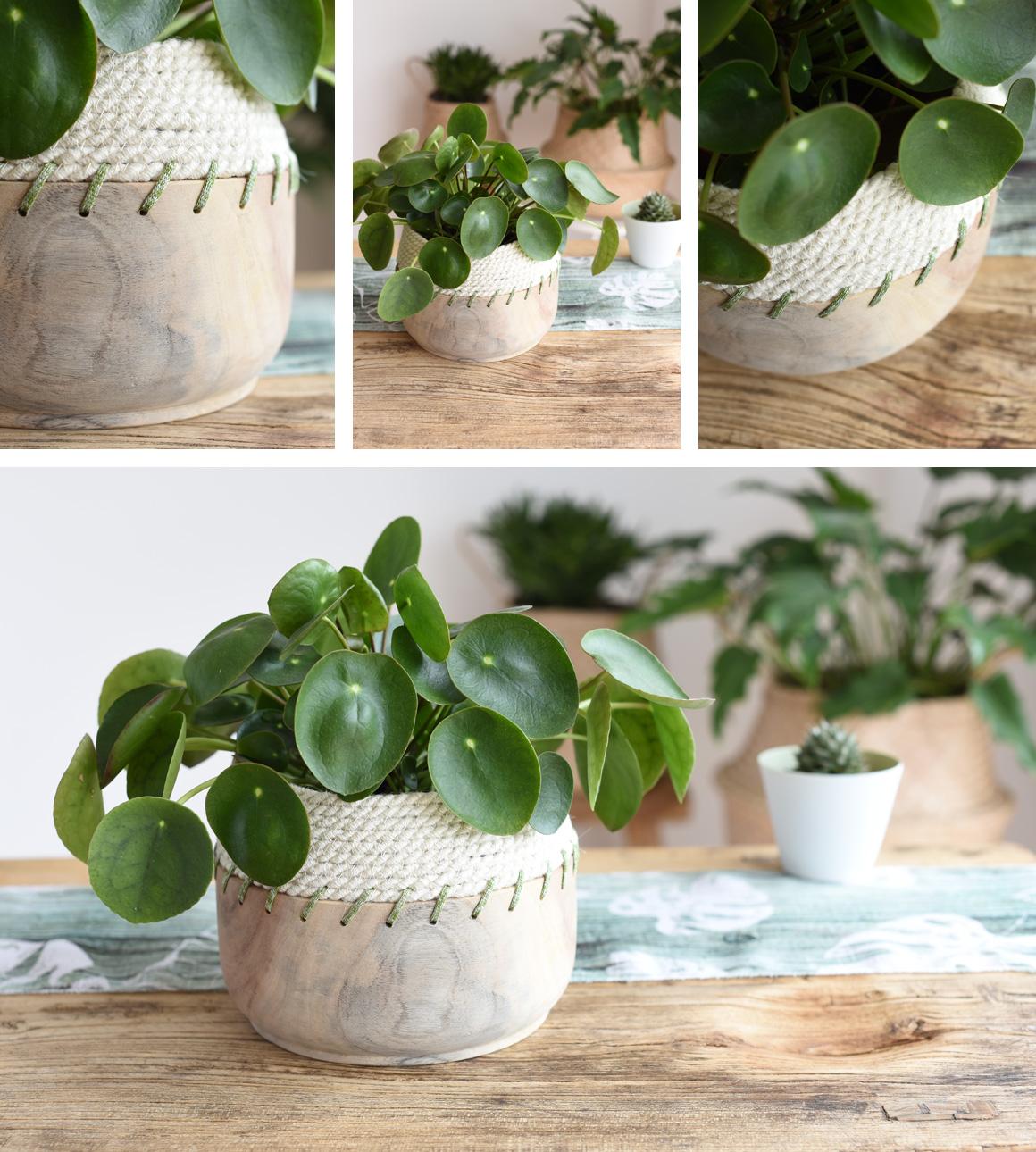 Jutta Nowak I Styling I Jute-Rope-Bowl nähen I Pilea I Natural Look