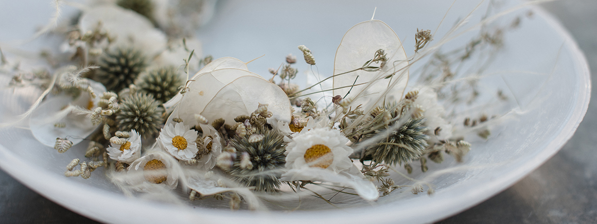 Jutta Nowak I Floristik ∙ Styling ∙ Redaktion I Trockenblumen in Wachsschale
